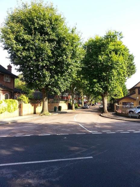 oaktreegardens
