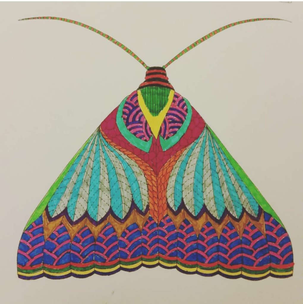 29colouringmoth