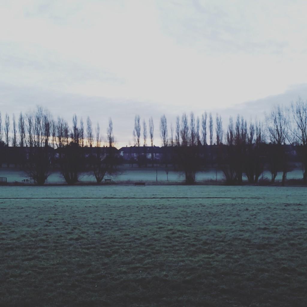frostychinbrookmeadows