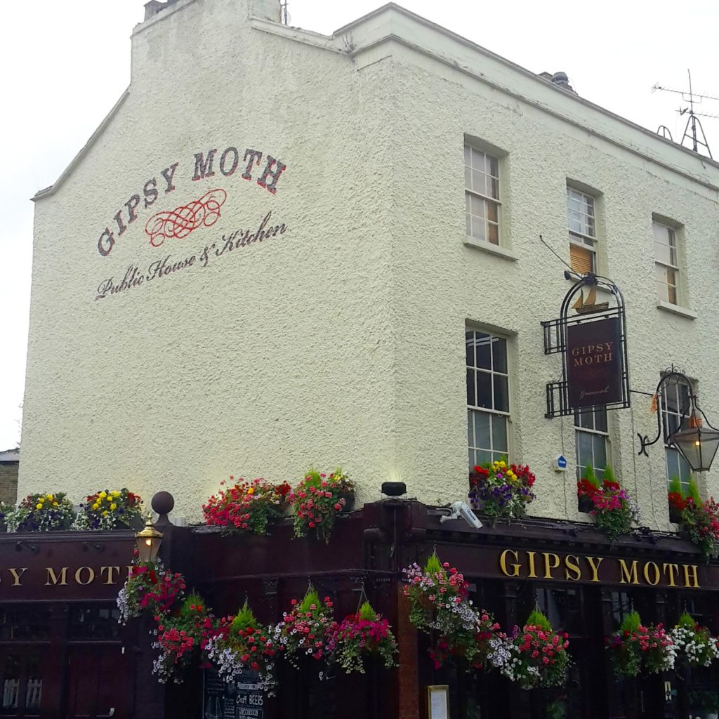 Gypsy Moth Greenwich