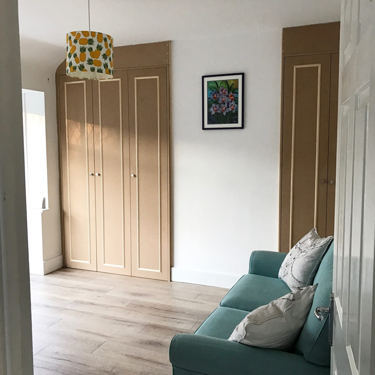 Spare Room Renovation