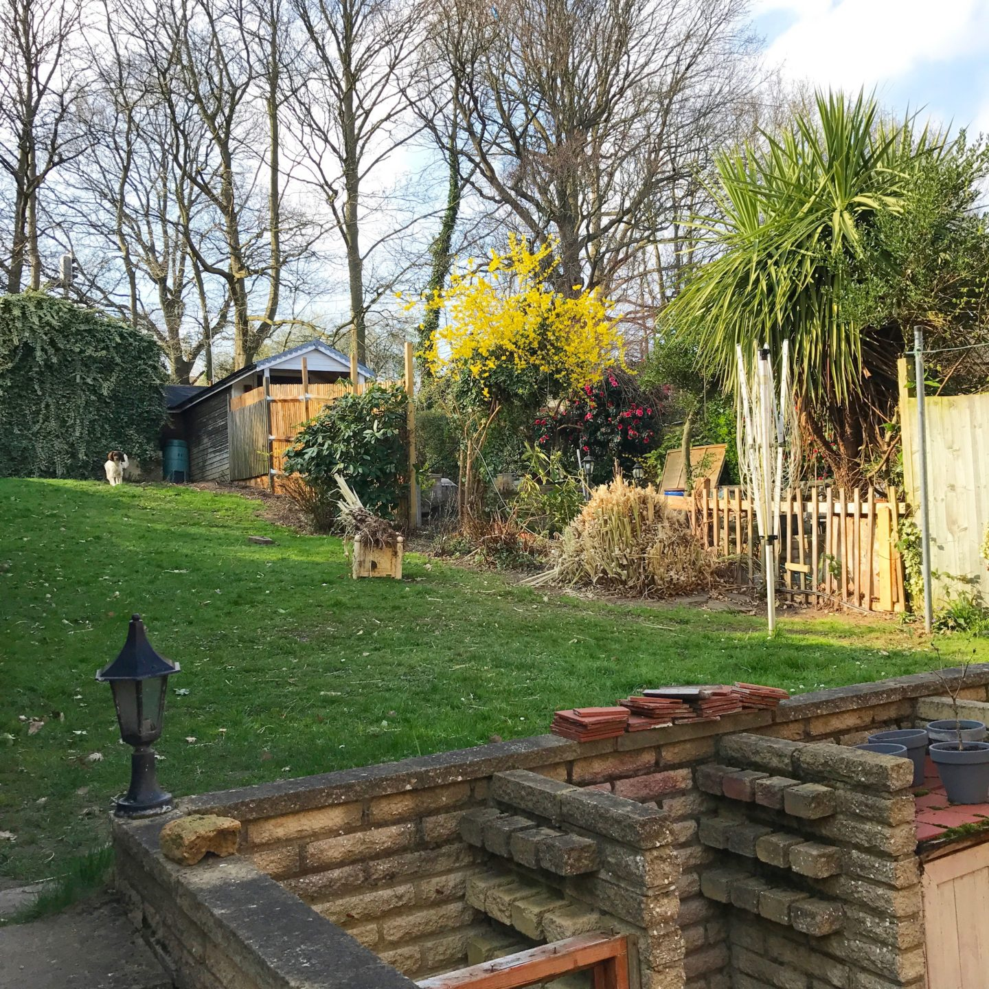South East London Garden Revamp