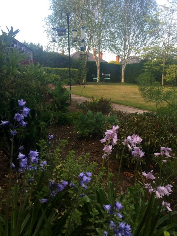 Dekko Bird Blog Garden Tour
