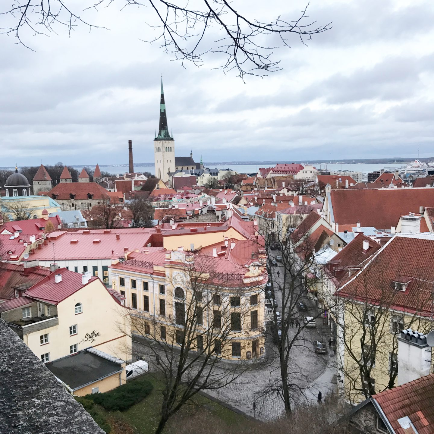 My Sunday Photo Tallinn Rooftops