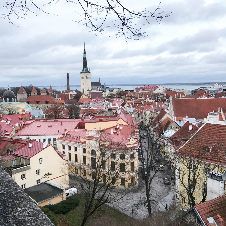 My Sunday Photo Tallinn Rooftops