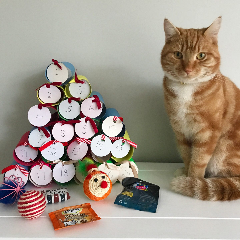 Lady Dinah's Cat Emporium Advent Calendar