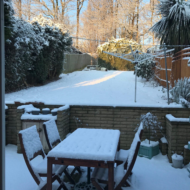 Snow Grove Park 2018