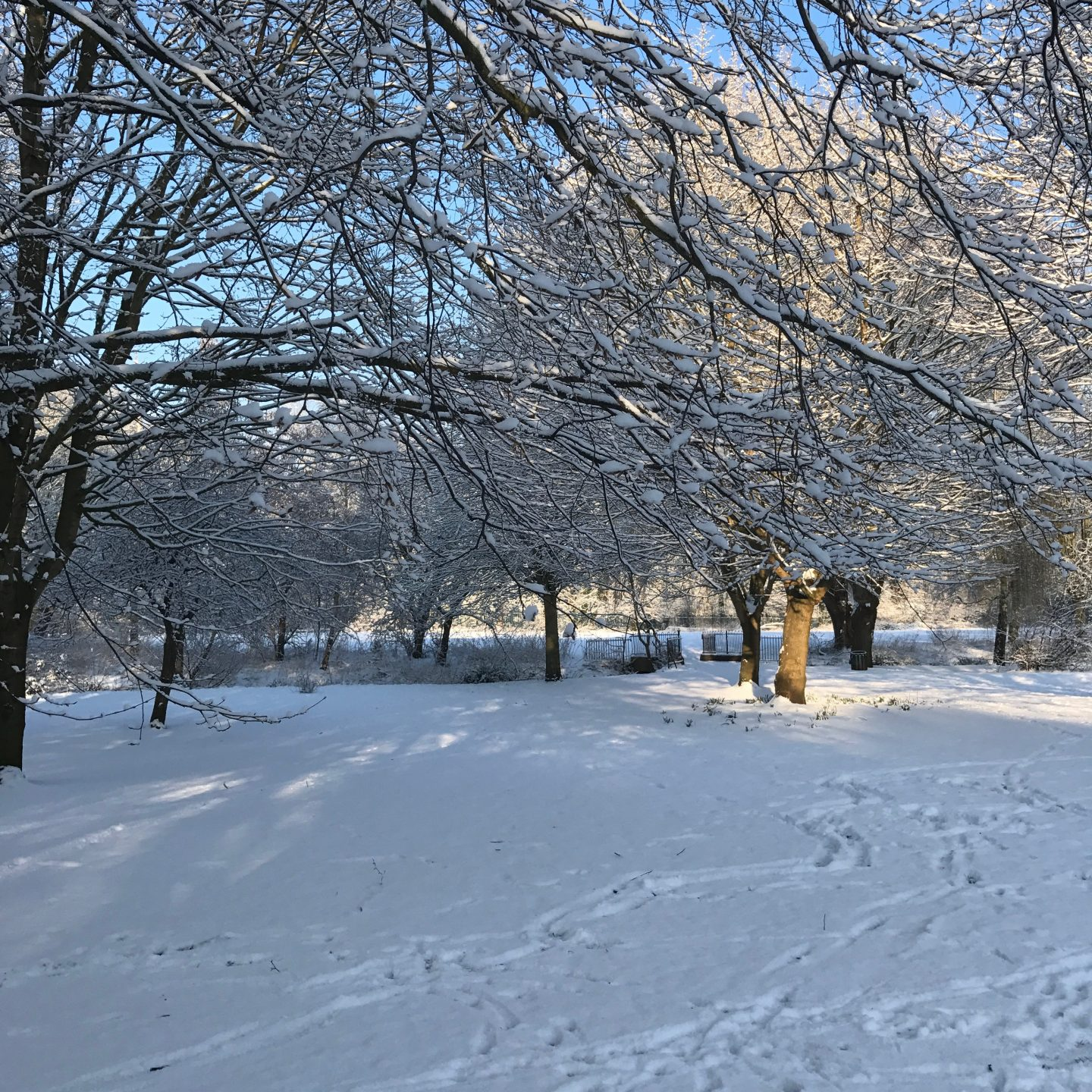 Chinbrook Meadows Snow 2018