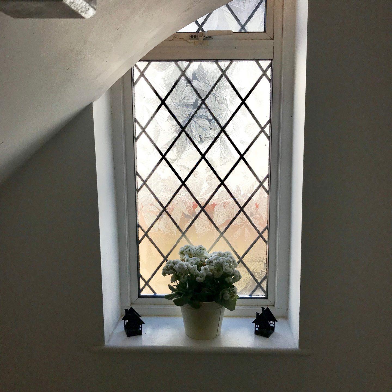 Renovation Update New Windows