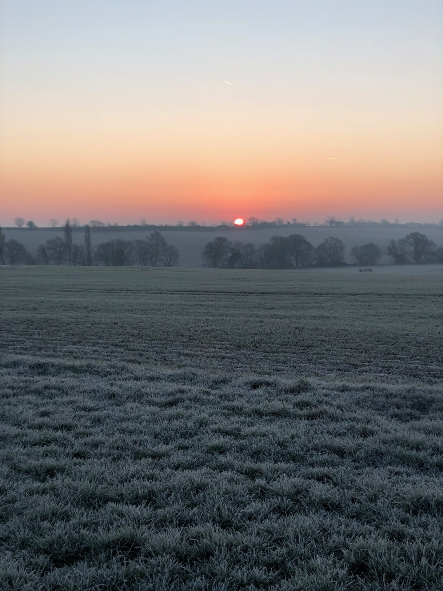 Sunrise at Body And Mind Reboot